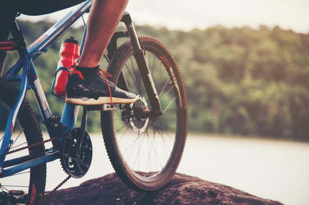 Quadros da bike: quais são os principais tipos?
