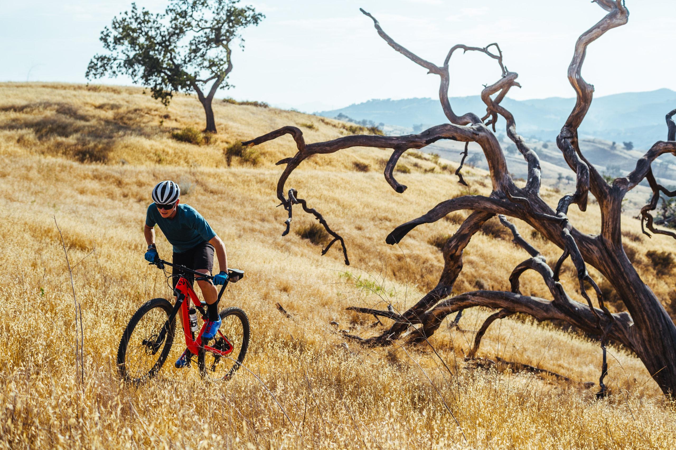 Começar a pedalar? Veja 10 dicas para ir hoje mesmo